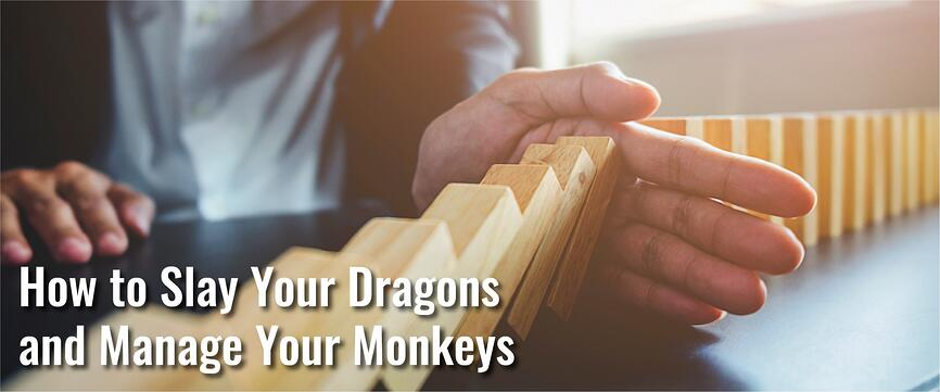How to Slay Your Dragons and Manage Your Monkeys-02.jpg
